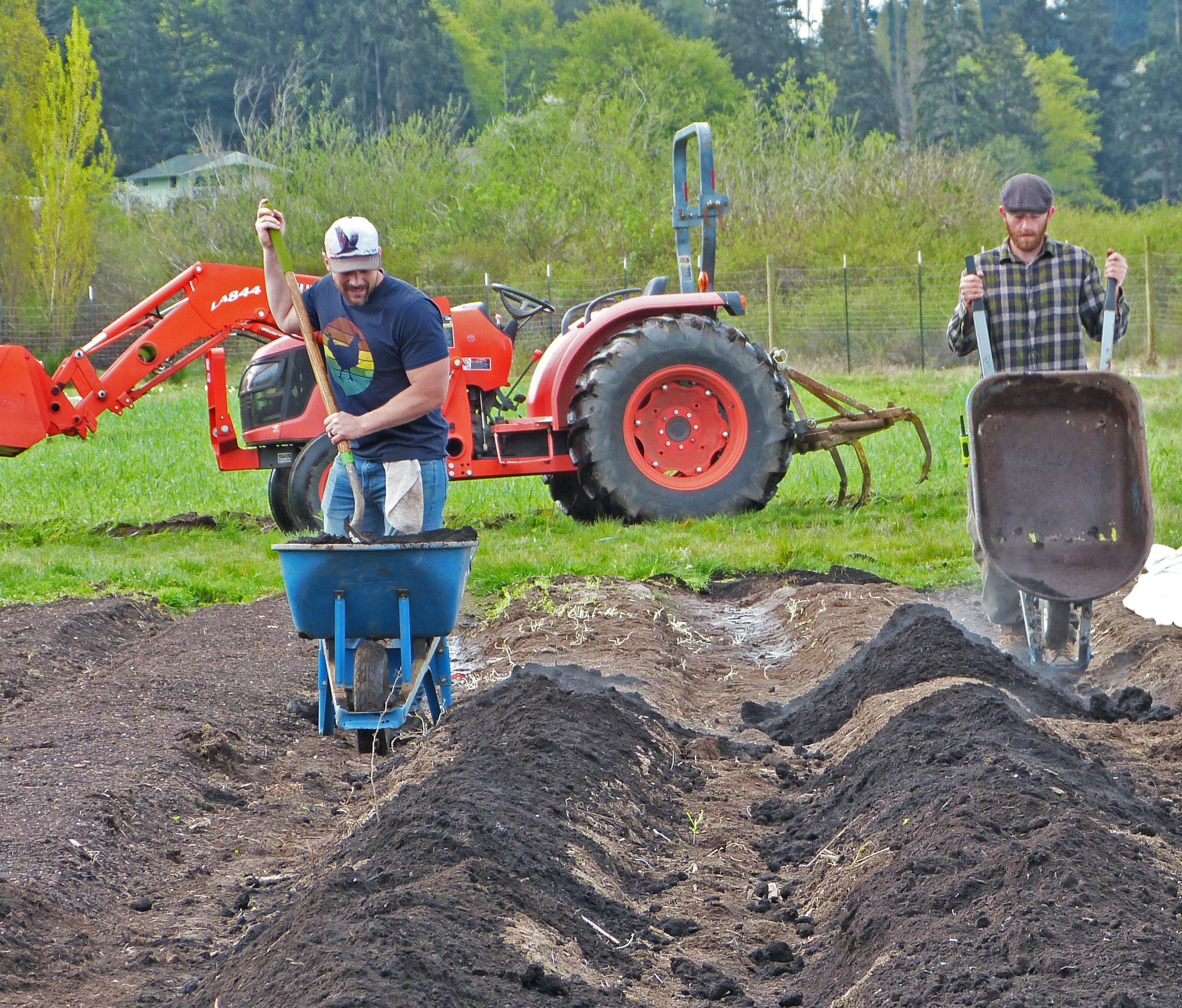 "New Trainee (Josh Christopher) and Field Assistant (Dalton Lischalk) measure out compost from Cedar Grove onto beds scheduled for planting. Because farms distribute their produce off-site, they can't be a ""closed loop system"" - but by sourcing compost that has been made from food and yard waste in neighboring King County, the Organic Farm School gets closer to that goal."